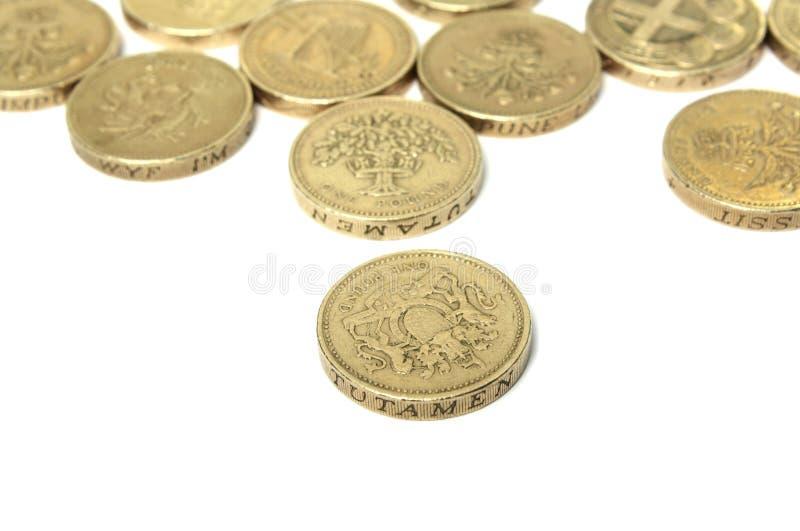 在白色的1英镑硬币 库存图片