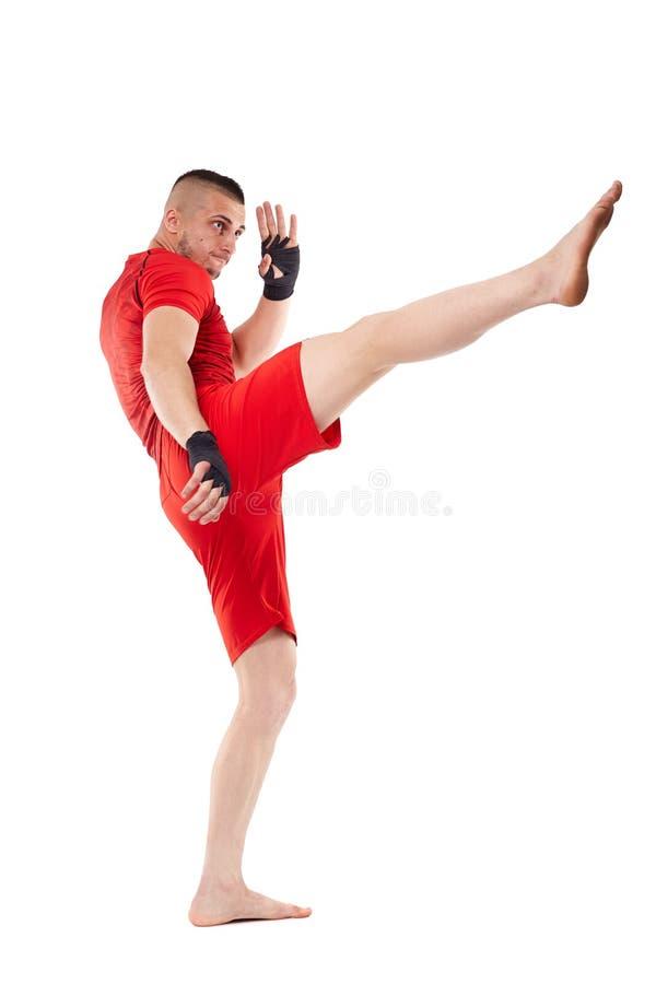 在白色的年轻kickbox战斗机 库存图片