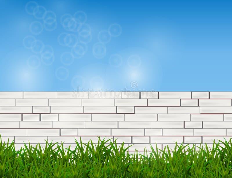 在白色砖墙和蓝天上的绿草 向量例证