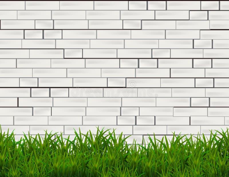 在白色砖墙背景隔绝的绿草 向量例证