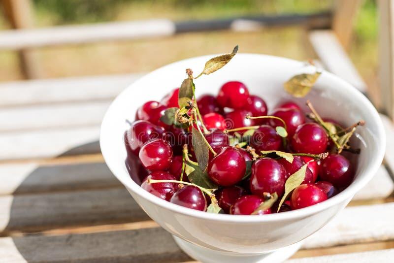 在白色碗特写镜头的新鲜的樱桃莓果 背景用莓果 在木的有机成熟红色樱桃莓果 免版税图库摄影