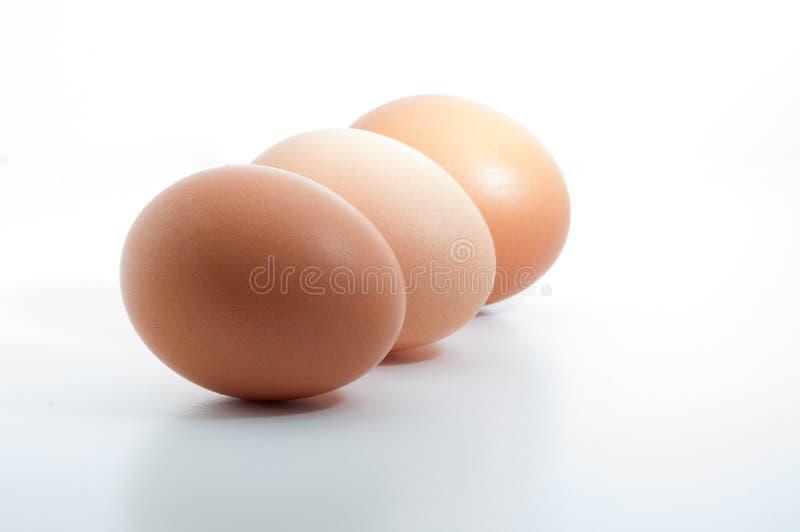 在白色空白的背景连续隔绝的三个鸡蛋 免版税图库摄影