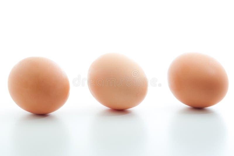 在白色空白的背景连续隔绝的三个鸡蛋 免版税库存照片