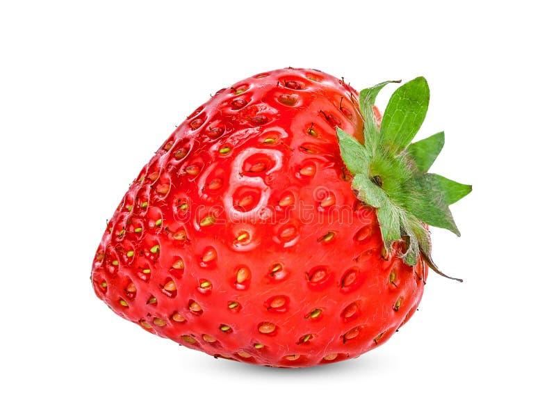 在白色红色草莓隔绝的整体 库存图片
