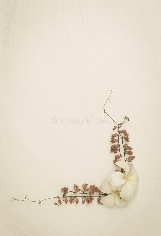 在白色纹理背景的花arrangment 免版税库存照片