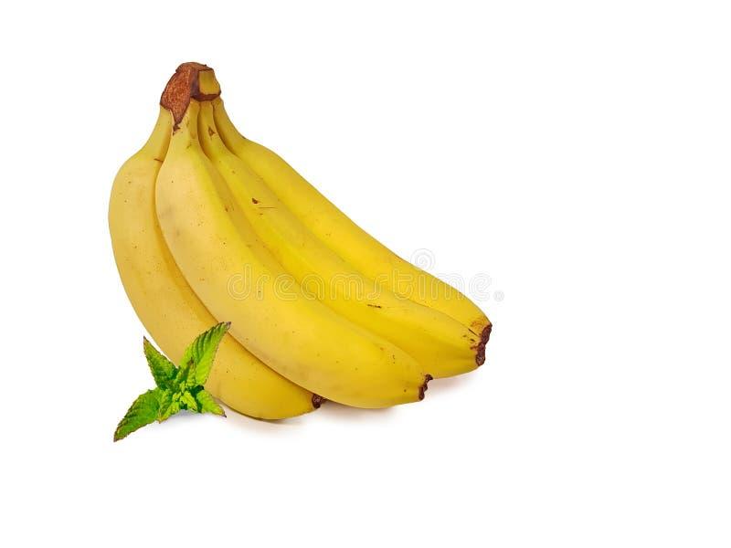 在白色背景中隔绝的香蕉和薄菏叶子 免版税图库摄影