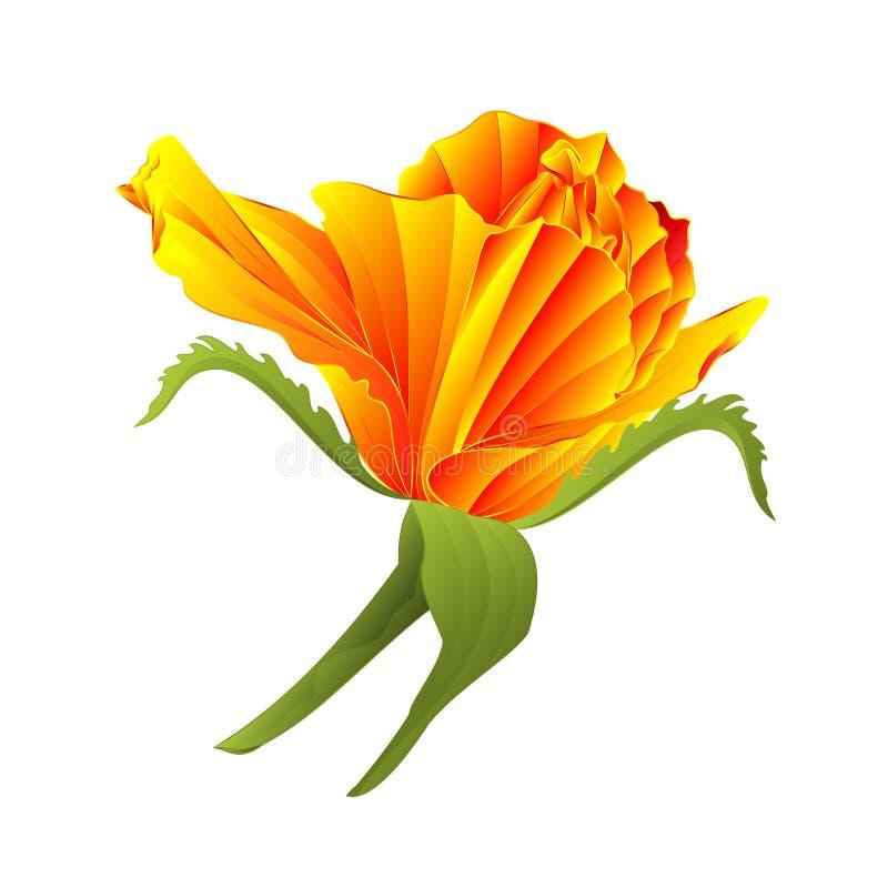 在白色背景传染媒介例证编辑可能的手凹道的黄色玫瑰和叶子葡萄酒 向量例证