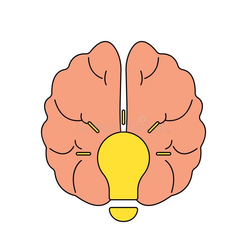 在白色背景传染媒介例证隔绝的电灯泡想法概念平的象的人脑 皇族释放例证