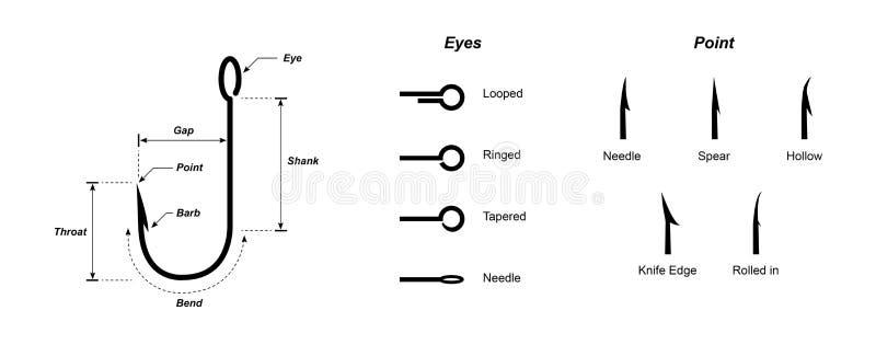 在白色背景传染媒介隔绝的钓鱼钩钓鱼钩的解剖学 向量例证
