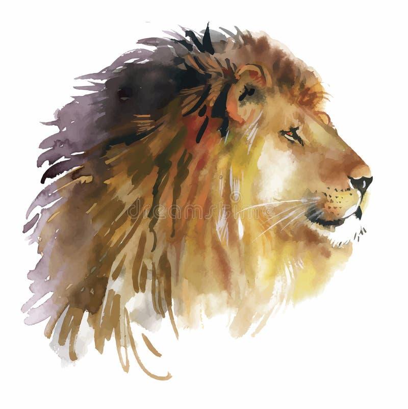 在白色背景传染媒介的水彩狮子 皇族释放例证