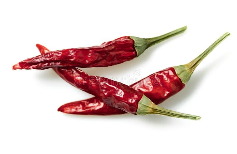 在白色背景保险开关隔绝的干红色辣椒或辣椒辣椒 免版税库存图片