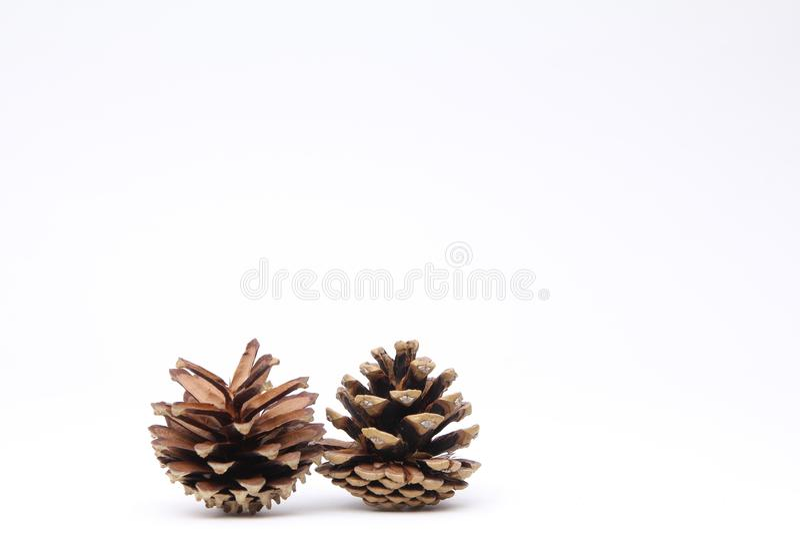 在白色背景前面的圣诞快乐 免版税库存照片
