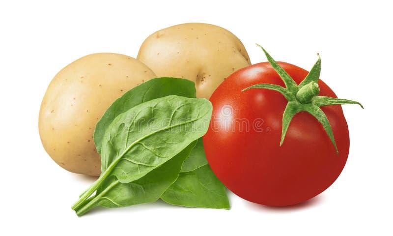 在白色背景和菠菜隔绝的蕃茄、土豆 免版税库存图片