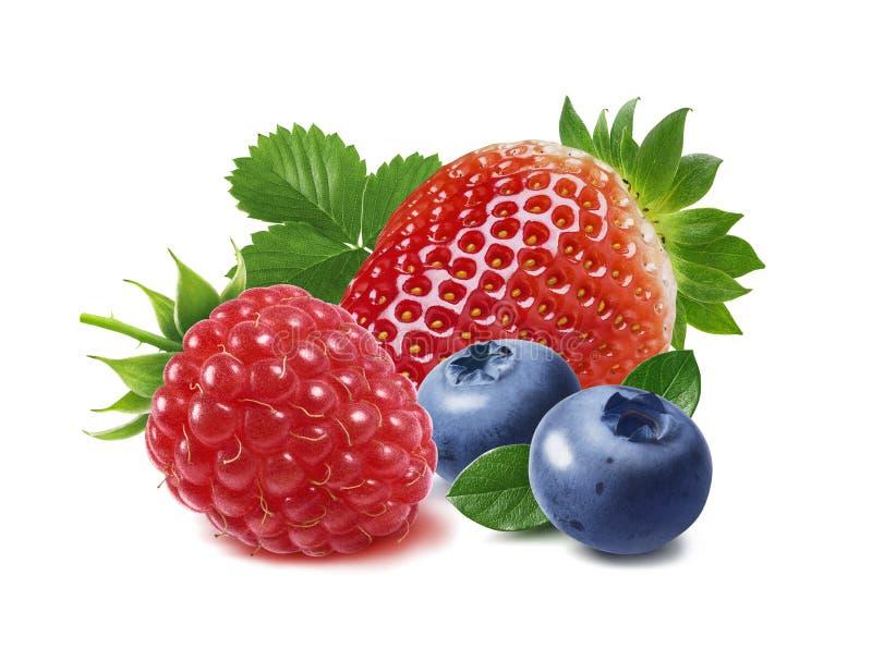 在白色背景和蓝莓隔绝的草莓、莓 免版税库存图片
