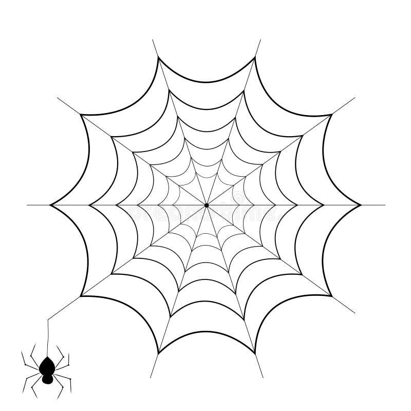 在白色背景和蜘蛛隔绝的spiderweb图片