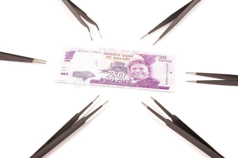 在白色背景和镊子隔绝的钞票 库存照片