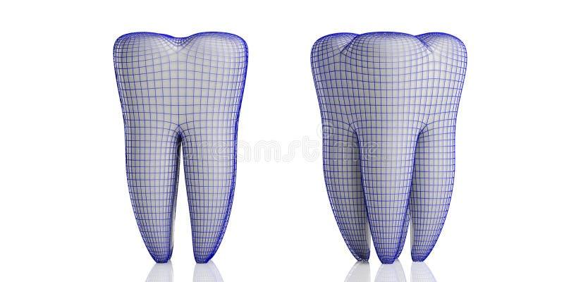 在白色背景和防护盾隔绝的牙模型 3d例证 库存例证