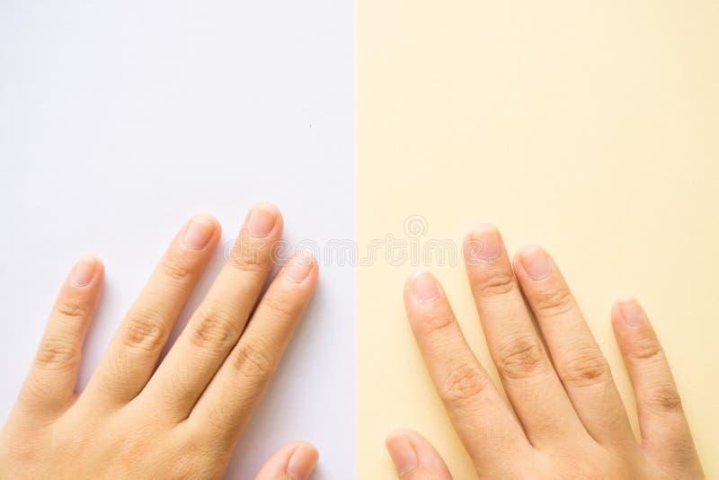 在白色背景和黄色背景的手 免版税库存图片