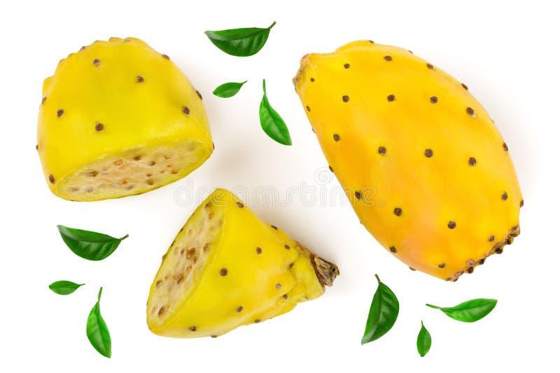 在白色背景或仙人掌隔绝的黄色仙人球装饰用绿色叶子 顶视图 平的位置 免版税库存图片