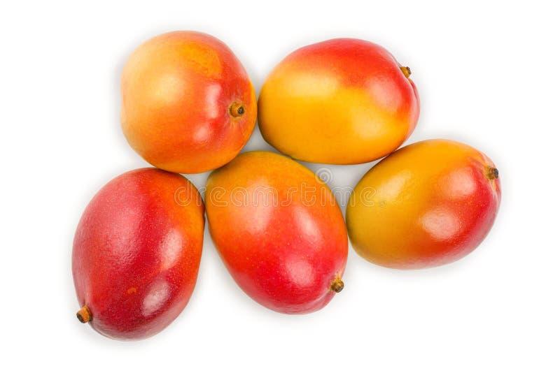 在白色背景特写镜头隔绝的芒果果子 顶视图 平的位置 免版税库存图片