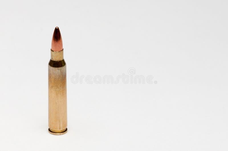 在白色背景的一个被隔绝的223弹药筒 库存照片