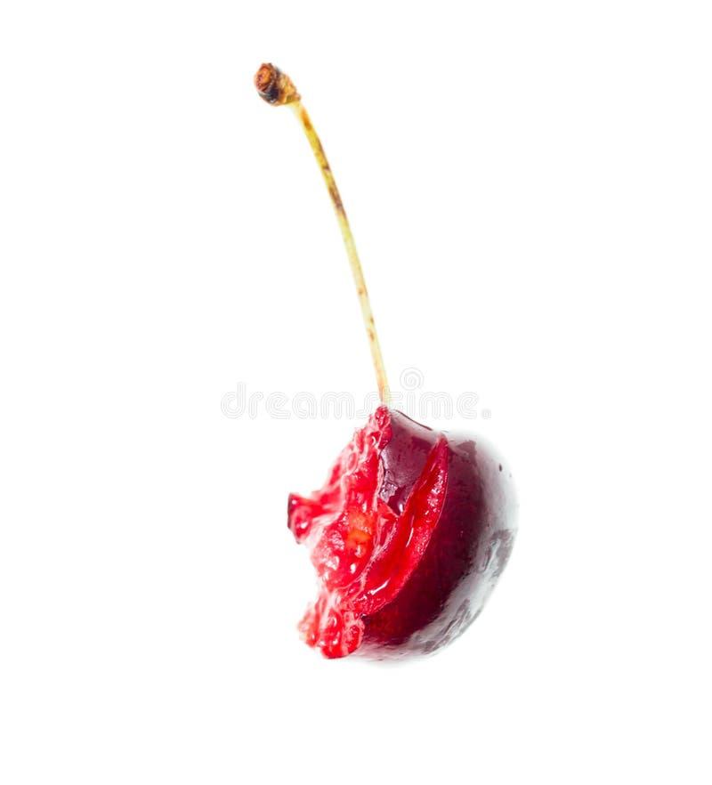 在白色背景的一棵被咬住的樱桃 免版税库存照片