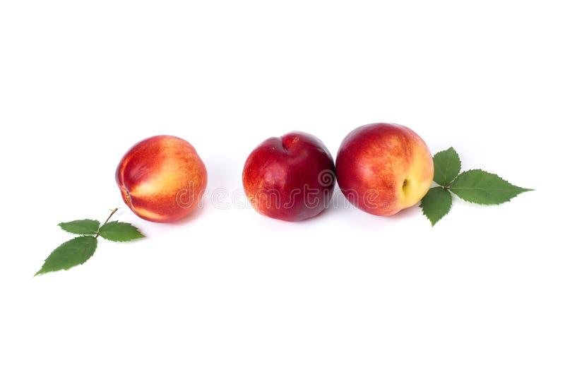 在白色背景的三个红色秃头桃子 桃子特写镜头红色 库存照片