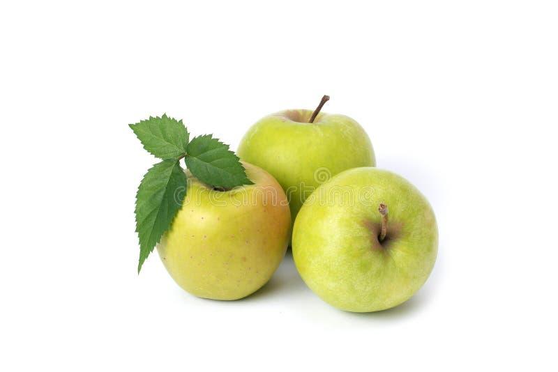 在白色背景的三个绿色苹果 在被隔绝的背景的成熟绿色苹果 库存照片