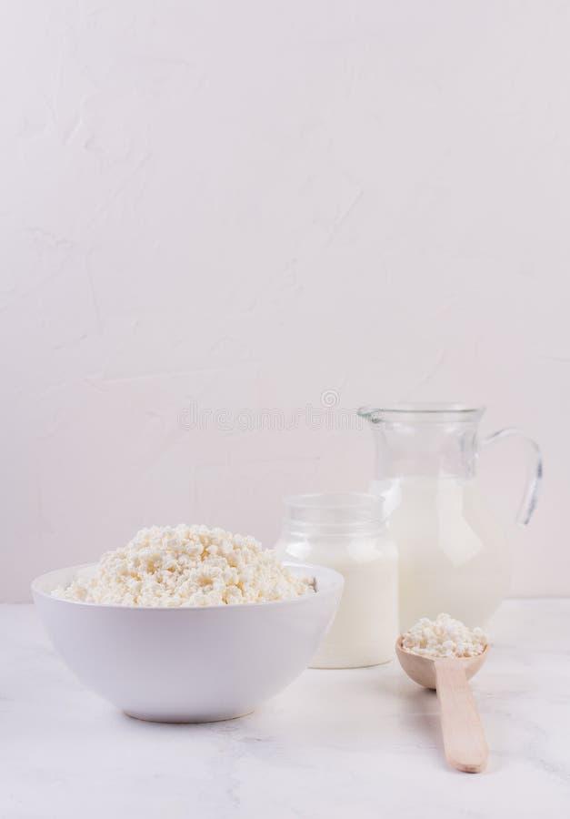 在白色背景的乳制品 库存图片