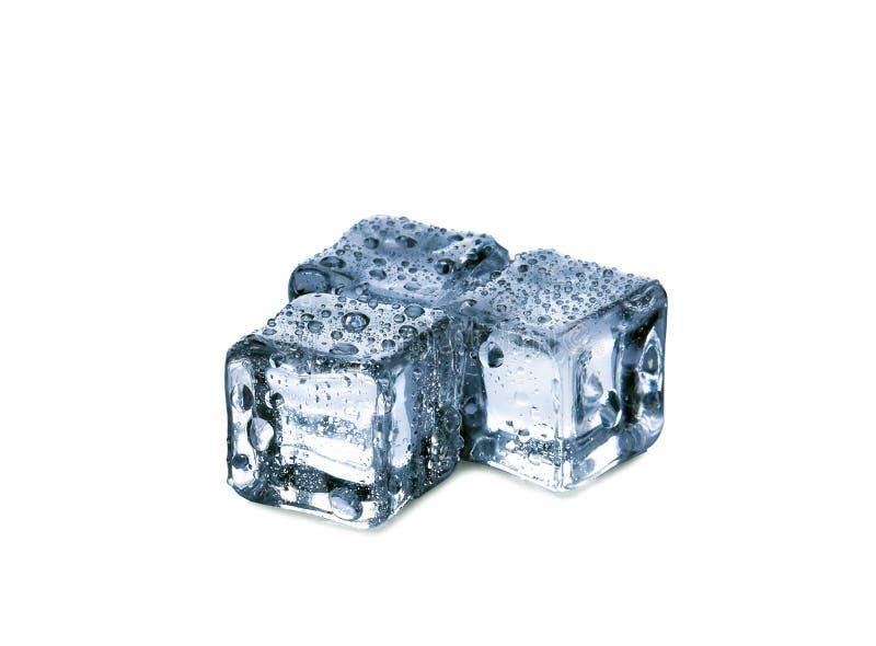 在白色背景的冰块 免版税库存图片