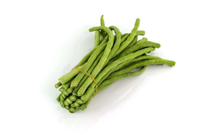 在白色背景的切好的母牛豌豆豆 库存照片