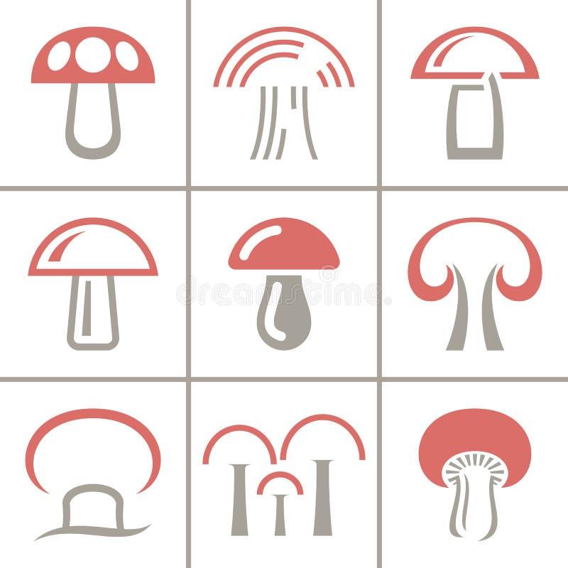 在白色背景的十九蘑菇汇集