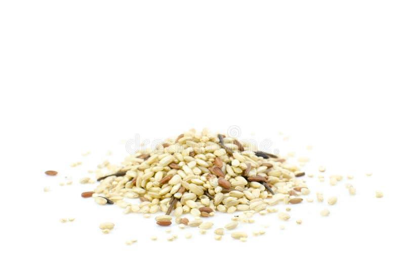 在白色背景的发芽的米和奎奴亚藜混合 免版税图库摄影