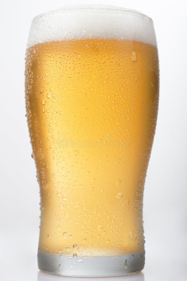 在白色背景的啤酒品脱 库存照片