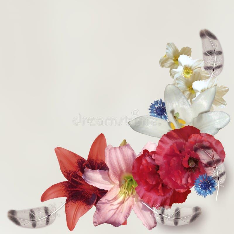 在白色背景的夏天花卉样式 库存图片
