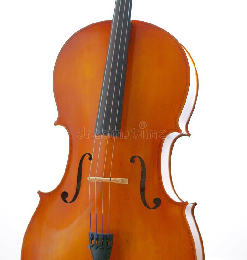 在白色背景的大提琴 库存图片