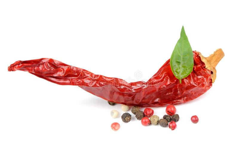 在白色背景的干辣椒和红色,黑和白胡椒玉米 图库摄影