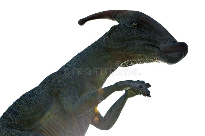 在白色背景的恐龙Parasaurolophus 孤立 库存照片