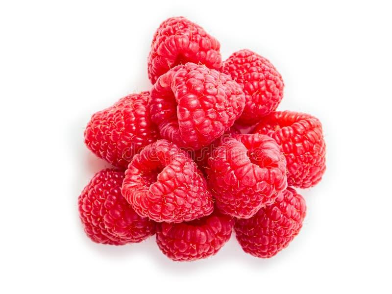 在白色背景的成熟莓 库存照片