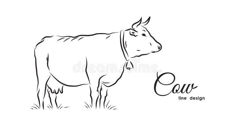 在白色背景的手拉的被隔绝的母牛 设计线路 皇族释放例证
