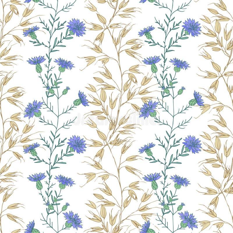 在白色背景的摘要花卉无缝的样式手图画 向量例证