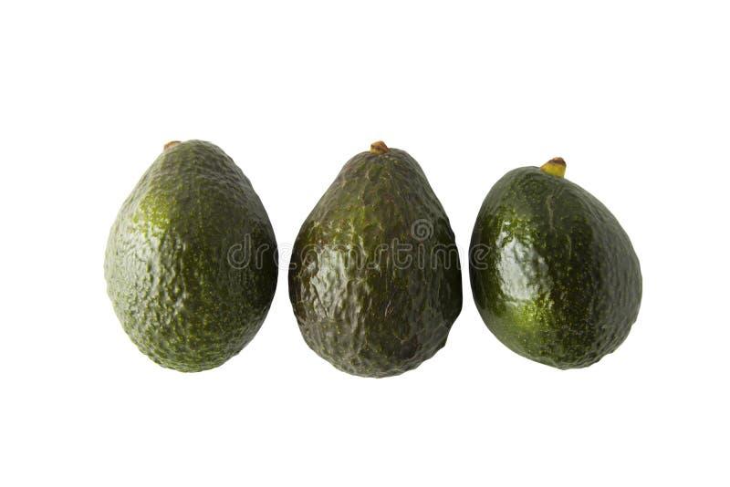在白色背景的新鲜的成熟鲕梨 健康食品成分 库存照片