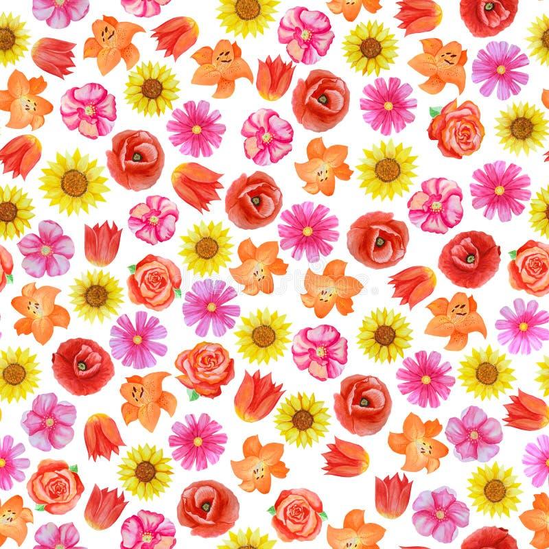 在白色背景的无缝的花卉样式 不同的明亮的红色和桃红色花 皇族释放例证