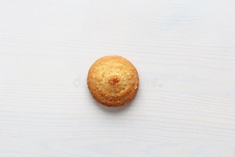 在白色背景的曲奇饼,相似与女性乳头 以曲奇饼的形式性感的乳头 幽默,双重意思 库存图片