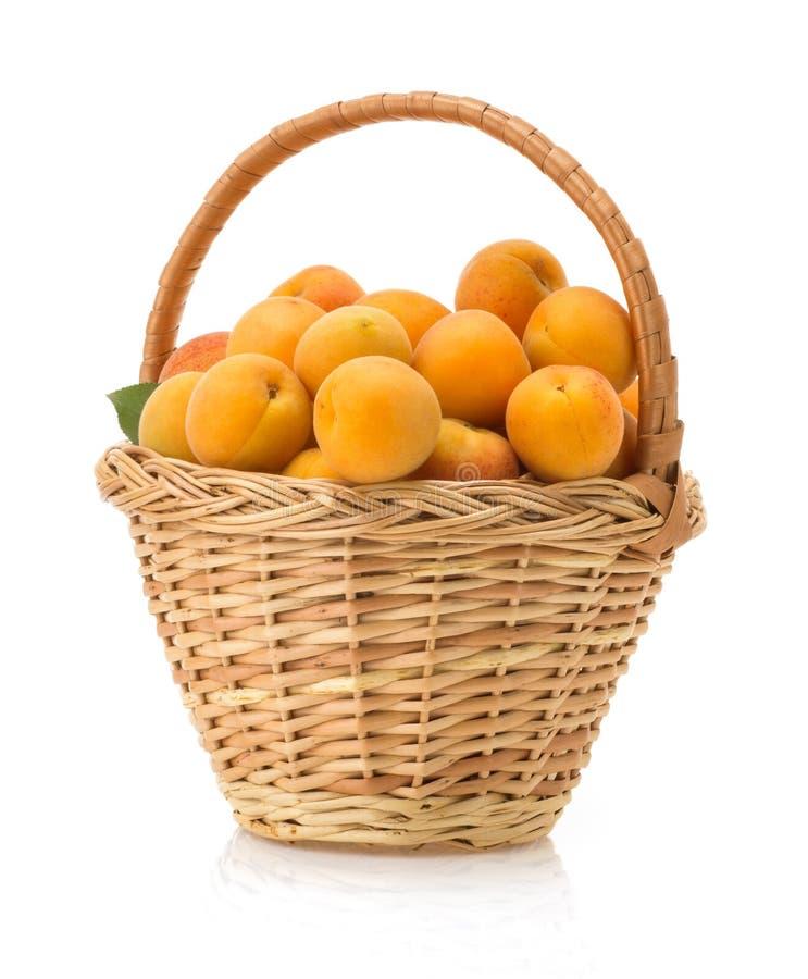 在白色背景的杏子 图库摄影