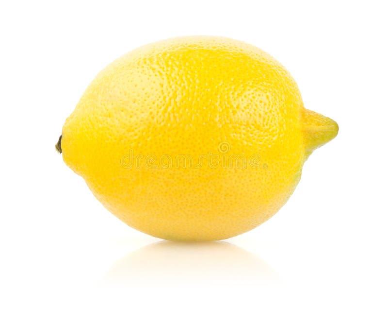 在白色背景的柠檬 免版税库存照片