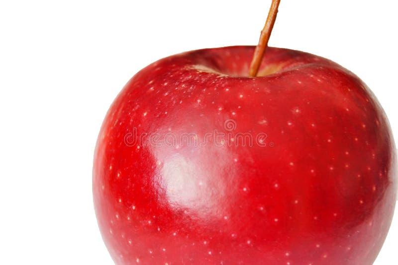 在白色背景的水多的红色苹果 免版税库存照片