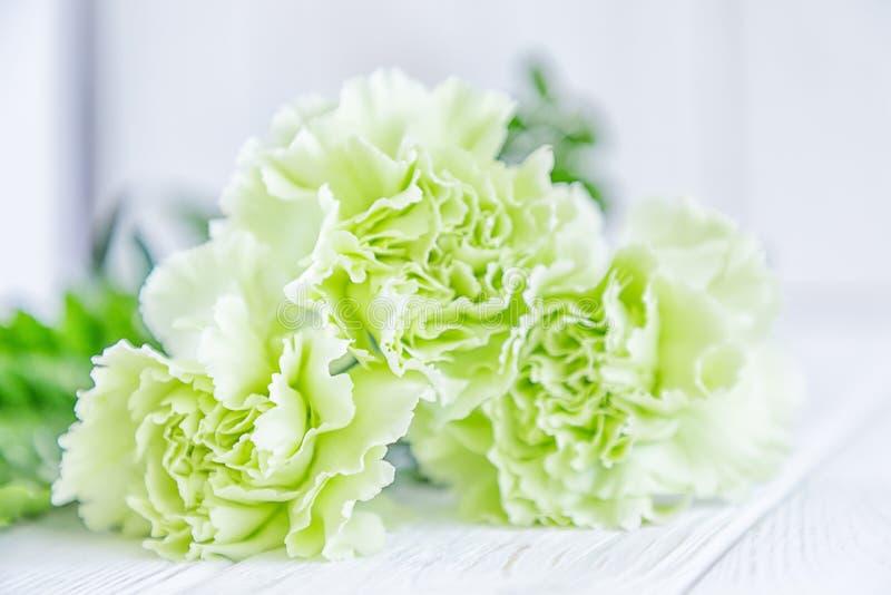 在背景淡色的浅绿色的丁香花白色.空位,空白.倒挂金钟室内好养吗图片