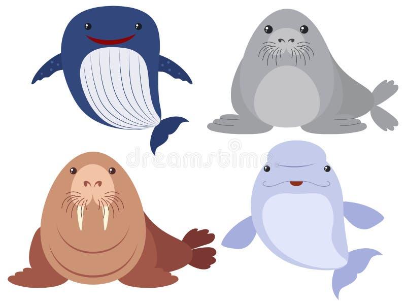 在白色背景的海洋动物 皇族释放例证