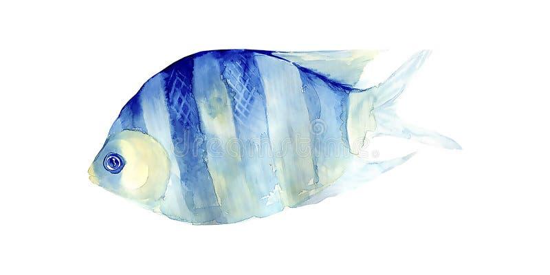 在白色背景的热带鱼 多孔黏土更正高绘画photoshop非常质量扫描水彩 库存照片